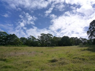 Large Development Potential in Yandina.